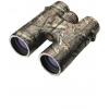 Leupold BX-2 Cascades 10x42 Mossy Oak 111742