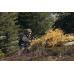 Возможность охоты с оптическим прицелом в горах