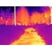 Разная окраска различных по температуре мест наблюдения