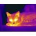 Возможность указывать оттенком цвета интенсивность теплового излучения