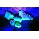 Ультрафиолетовые фонари для поиска янтаря
